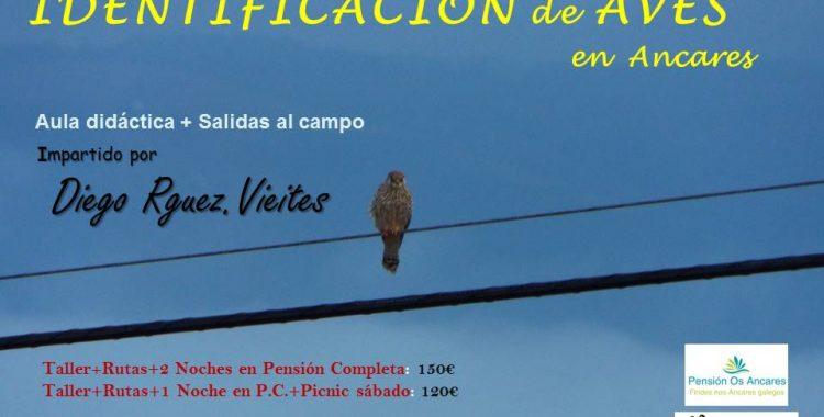 Birding 16-17 Septiembre